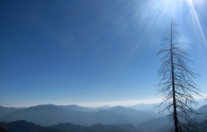 The view from a little used road en route to Lansdowne in Garhwal, part of a 2013 cycle trip-route (Photo: Shyam G Menon)