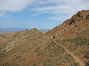 Running in the Gobi desert (Photo: courtesy Michelle Kakade)